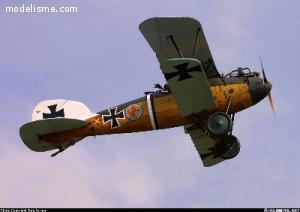 Albatros DV