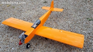 avion transition aile basse