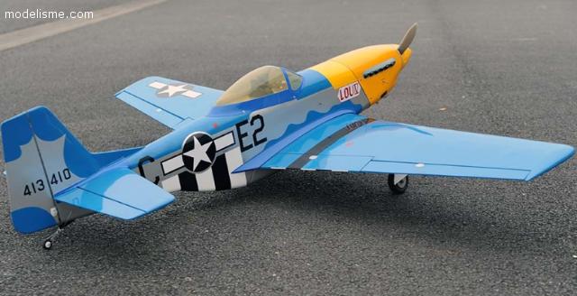 Vends P 51 D Topmodel